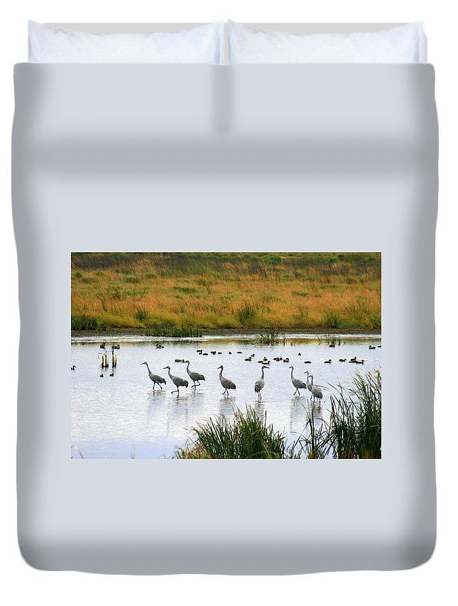 Nature Duvet Cover featuring the photograph The Dance Of The Sandhill Cranes by Kay Novy