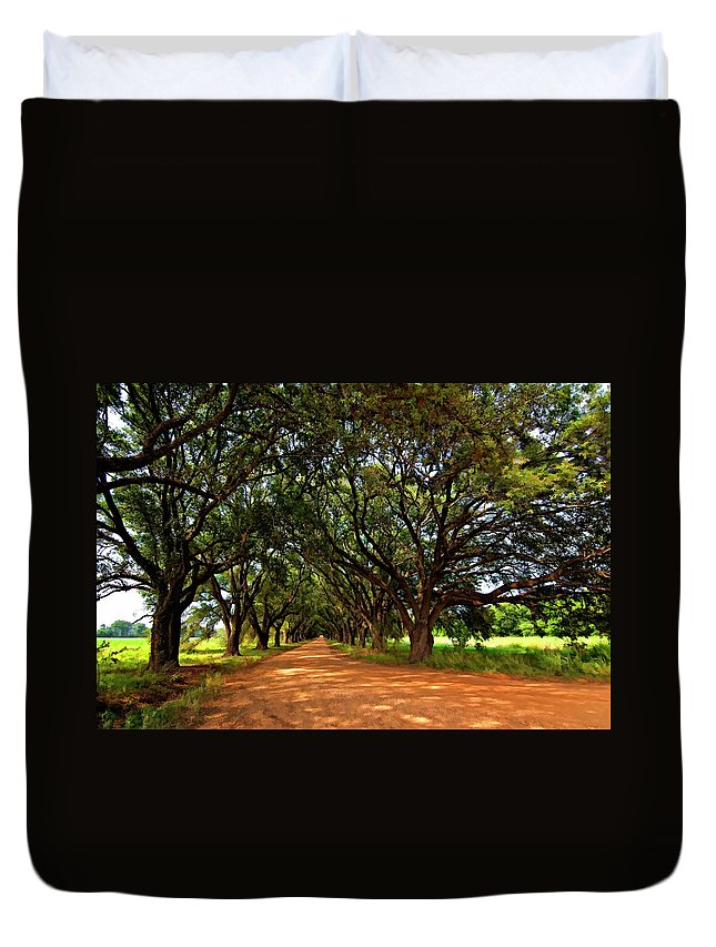 Evergreen Plantation Duvet Cover featuring the photograph The Deep South by Steve Harrington