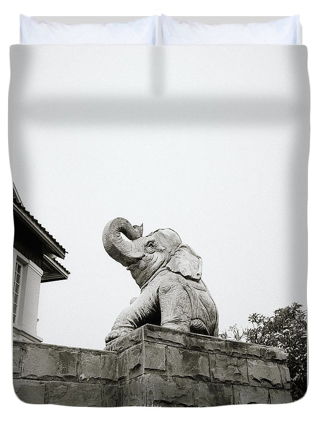 Asia Duvet Cover featuring the photograph The Elephant by Shaun Higson