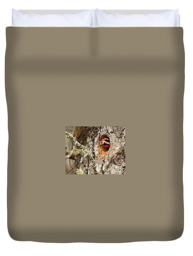 Woodpecker Duvet Cover featuring the photograph The Excavator by Lloyd Alexander
