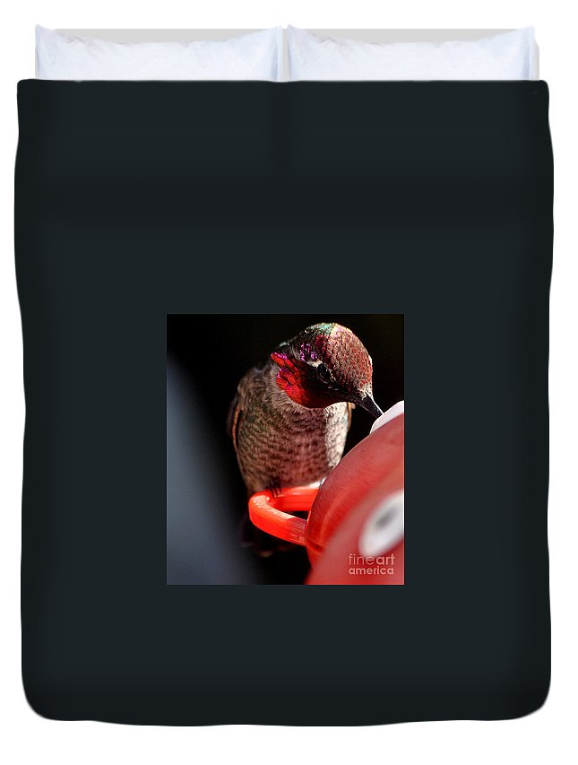 Hummingbird Duvet Cover featuring the photograph The Eye Has It by Jay Milo