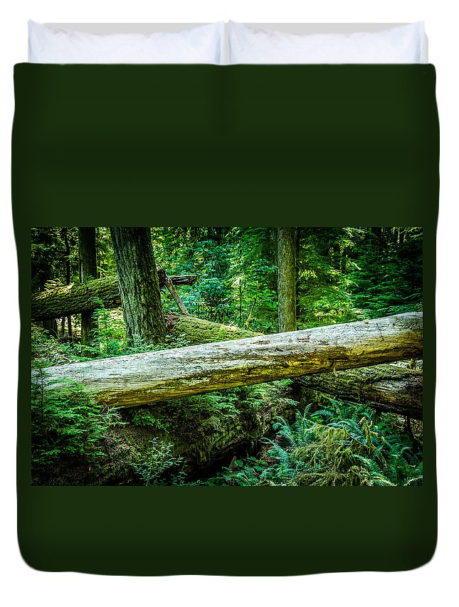 Old Growth Forest Duvet Cover featuring the photograph The Fallen Collection 12 by Roxy Hurtubise