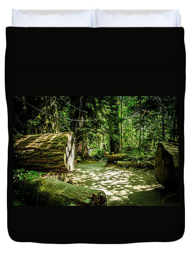 Old Growth Forest Duvet Cover featuring the photograph The Fallen Collection 13 by Roxy Hurtubise