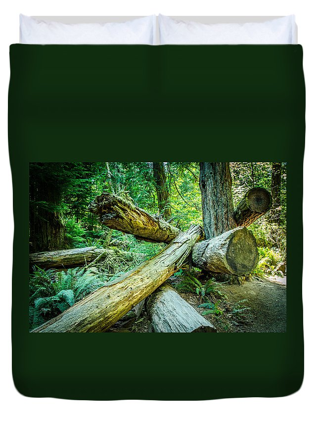 Old Growth Forest Duvet Cover featuring the photograph The Fallen Collection 8 by Roxy Hurtubise