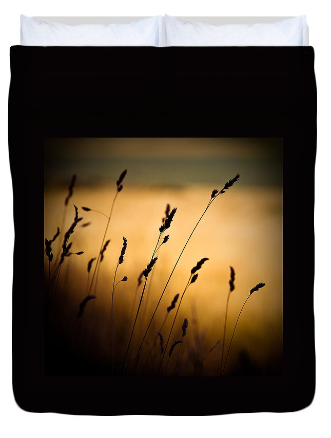 Filed At Sunset Duvet Cover featuring the photograph The Field by Dave Bowman