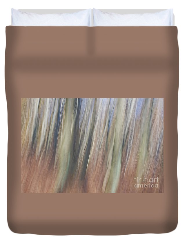 Tree Duvet Cover featuring the photograph The Flow Of Light V by Maria Ismanah Schulze-Vorberg
