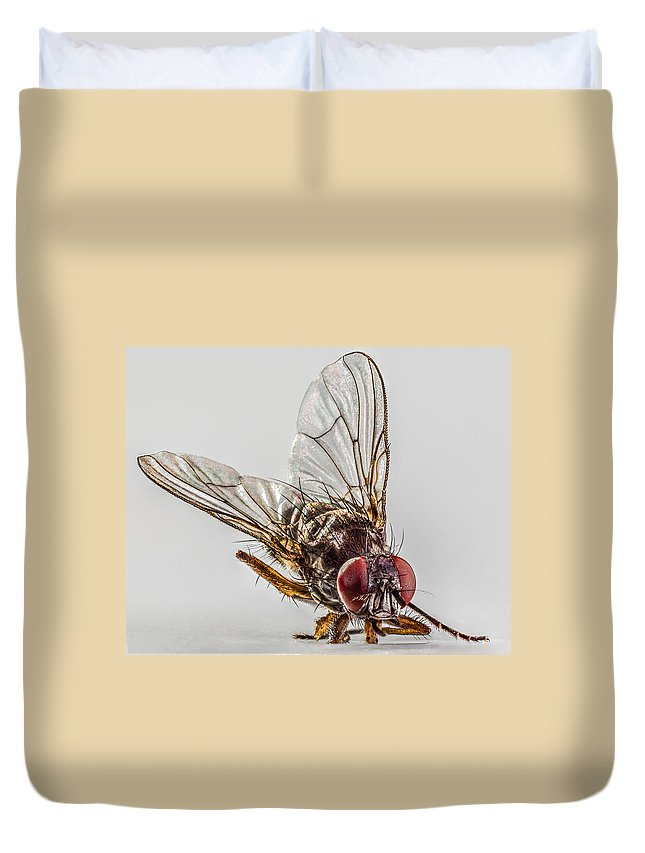 Fly Duvet Cover featuring the photograph The Fly by Ernesto Santos