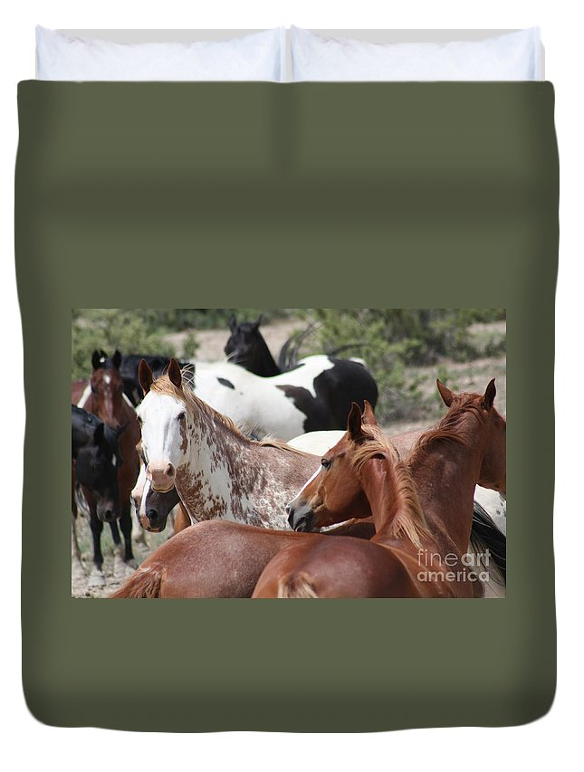 Horses Duvet Cover featuring the photograph The Gang by Brandi Maher