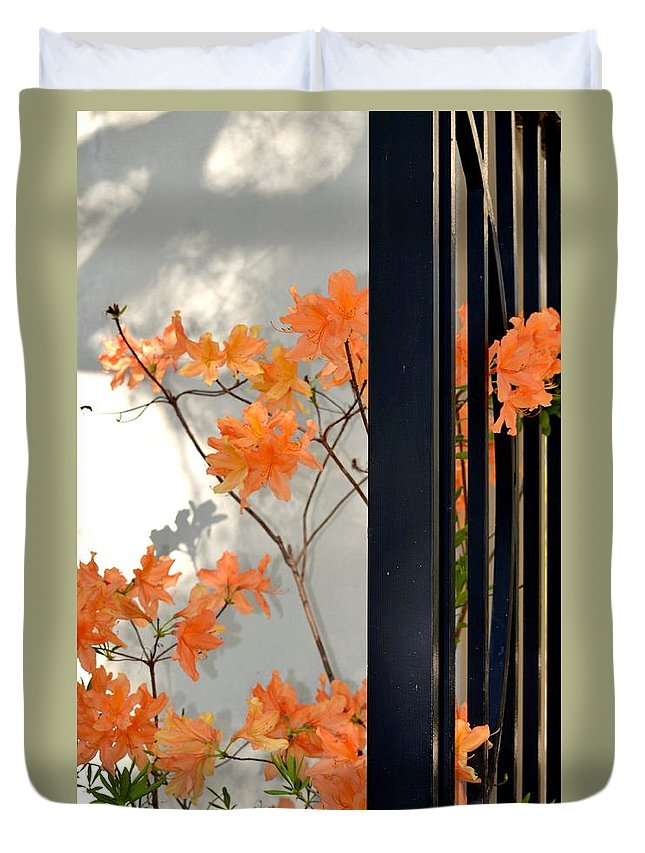 The Gatekeepers Duvet Cover featuring the photograph The Gatekeepers by Maria Urso