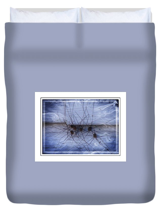Arachnids Duvet Cover featuring the photograph The Gathering - Long Leg Spiders by Barbara Griffin