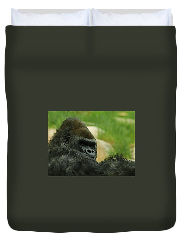 Animals Duvet Cover featuring the digital art The Gorilla 2 by Ernie Echols