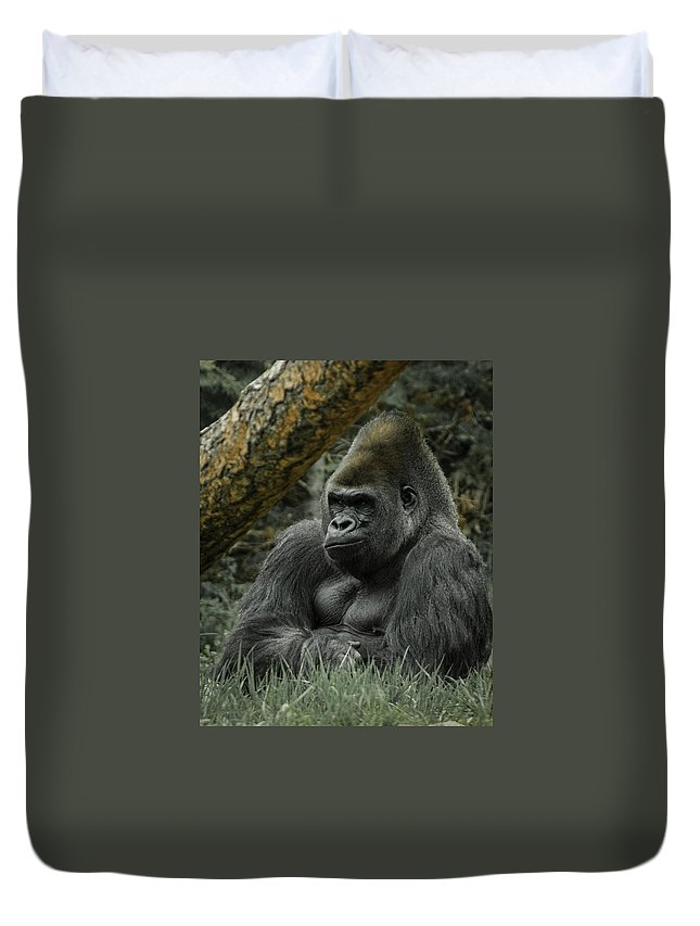 Animals Duvet Cover featuring the digital art The Gorilla 3 by Ernie Echols