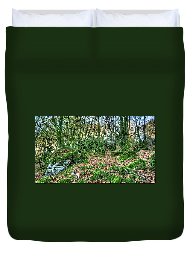 Boxer Duvet Cover featuring the photograph The Guardian Of The Dead Dragon by Weston Westmoreland
