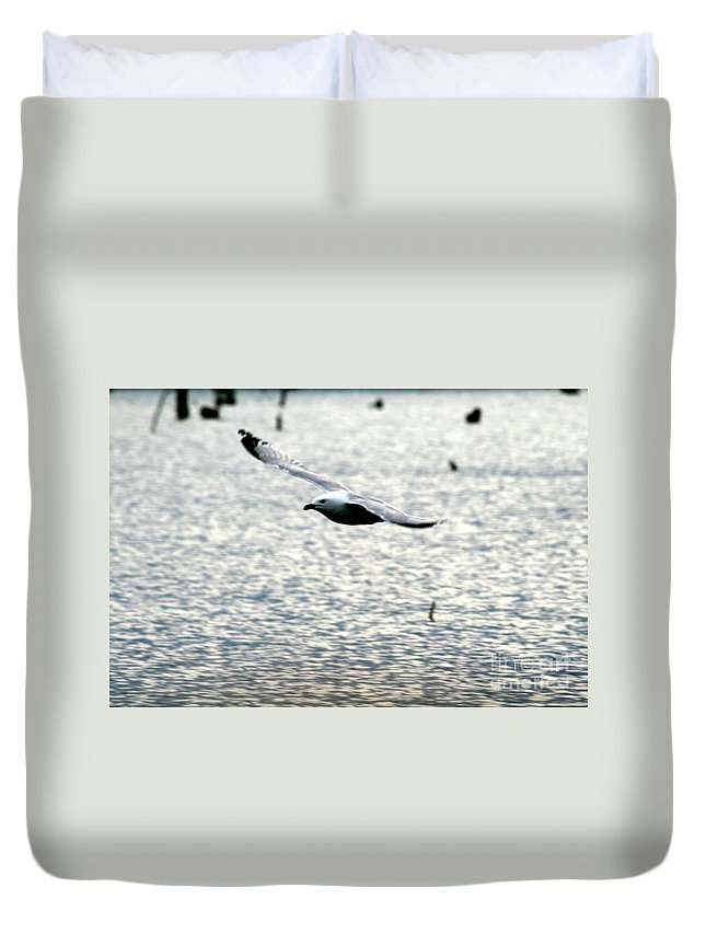 The Landing Duvet Cover featuring the photograph The Landing by Pharaoh Martin