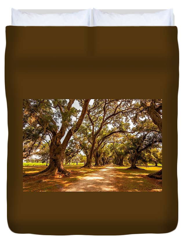 Evergreen Plantation Duvet Cover featuring the photograph The Lane 2 by Steve Harrington