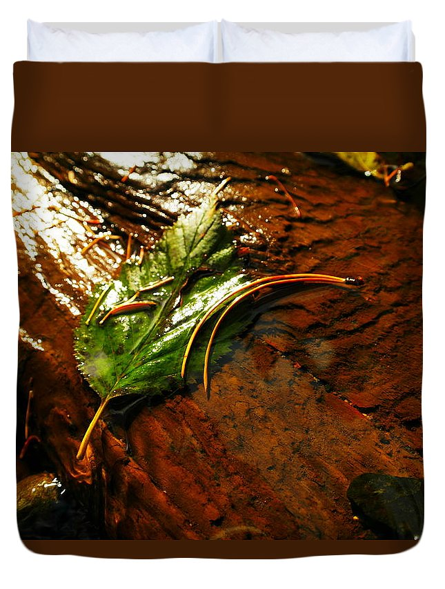 Autumn Duvet Cover featuring the photograph The Last Leaf by Jeff Swan