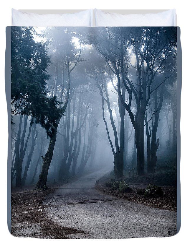 Nature Duvet Cover featuring the photograph The Last Road by Jorge Maia