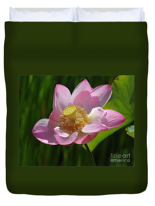 Lotus Duvet Cover featuring the photograph The Lotus by Vivian Christopher