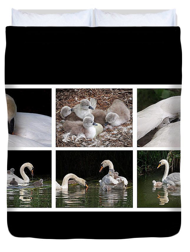 Swan Duvet Cover featuring the photograph The Magic Of Spring Panorama by Gill Billington