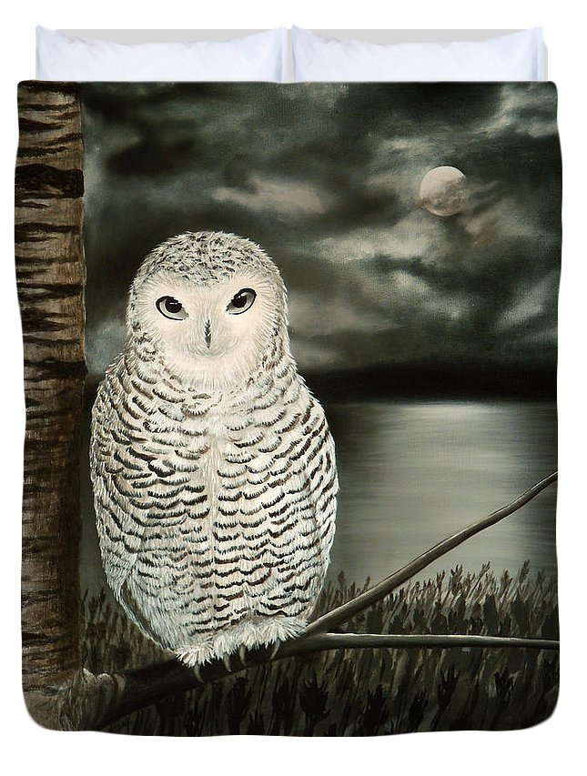Owl Duvet Cover featuring the painting The Marsh At Night by Liz Boston