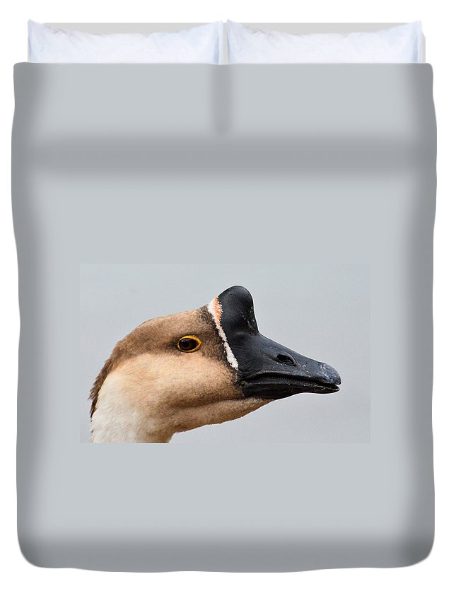 The Meandering Gander Duvet Cover featuring the photograph The Meandering Gander by Maria Urso