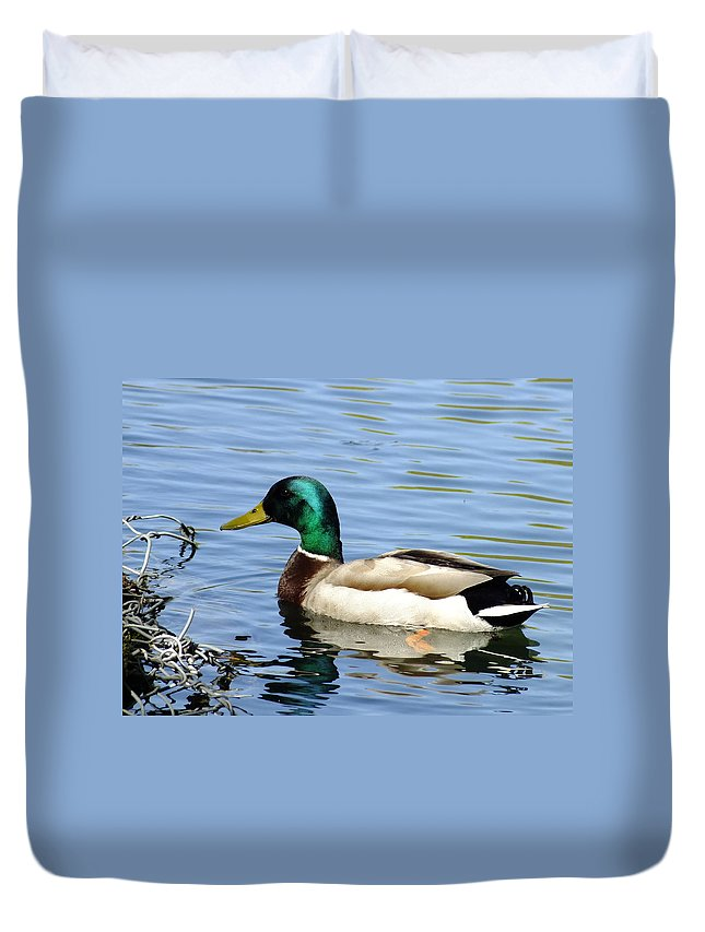 Nature Duvet Cover featuring the photograph The Other Half by Peggy King