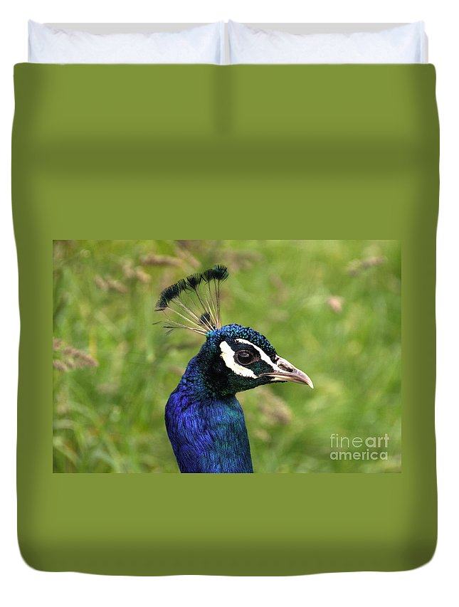 Peacock Duvet Cover featuring the photograph The Peacock by Rob Hawkins