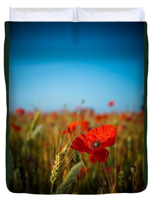 Agriculture Duvet Cover featuring the photograph The Poppy by Hannes Cmarits