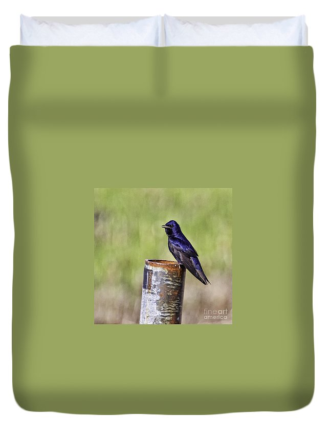 Songbird Duvet Cover featuring the photograph The Post by Jan Killian