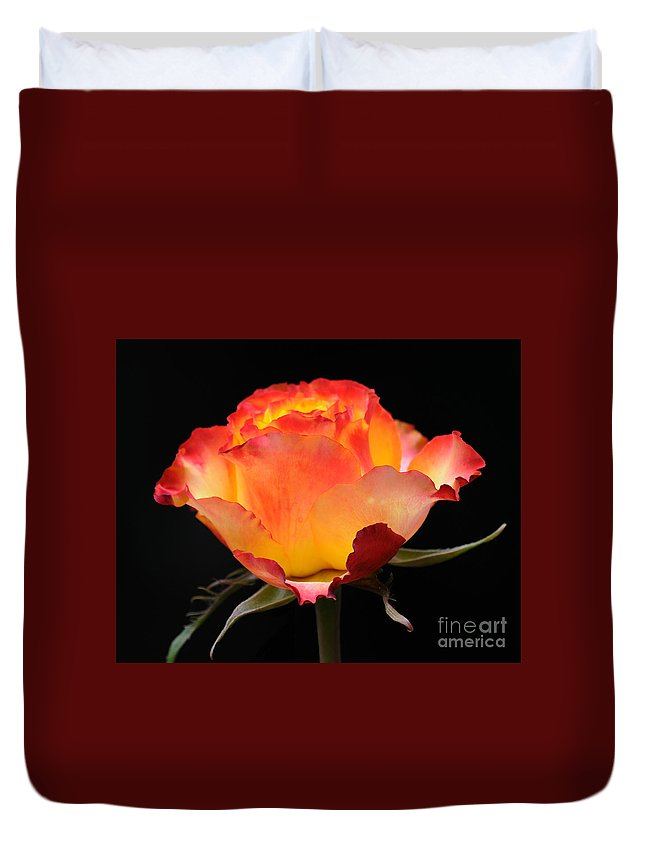 Rose Duvet Cover featuring the photograph The Rose by Vivian Christopher