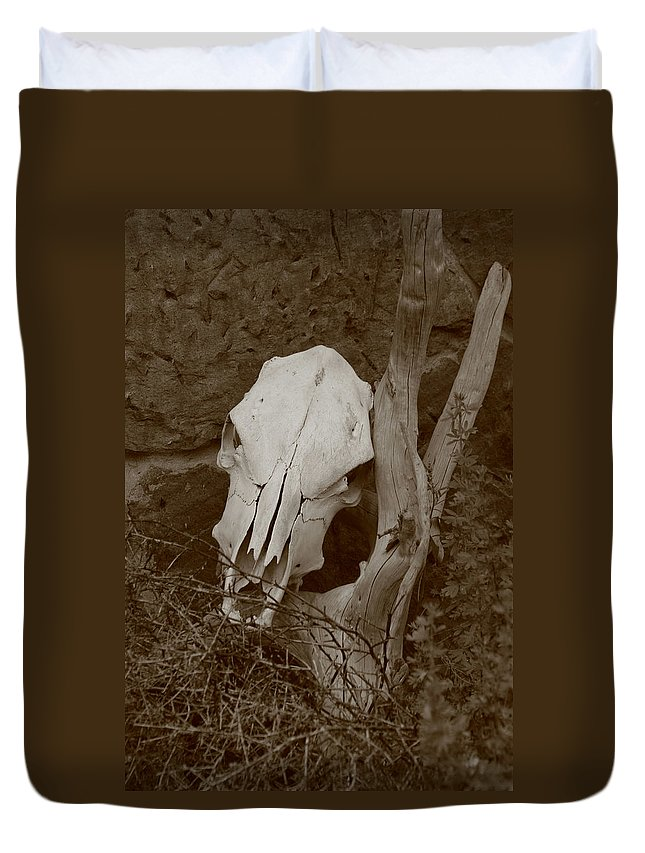 Skull Duvet Cover featuring the photograph The Skull by Jes Fritze