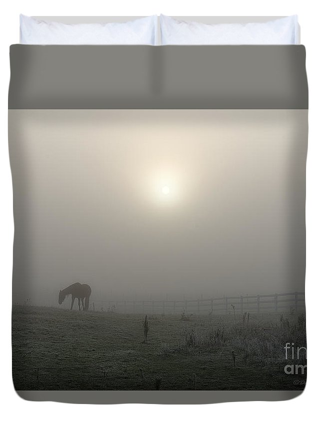 Horse Duvet Cover featuring the photograph The Space Between Earth And Time by David Arment