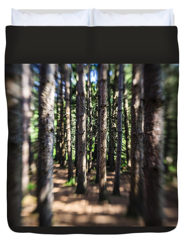 Water Duvet Cover featuring the photograph The Surreal Forest by Alex Potemkin