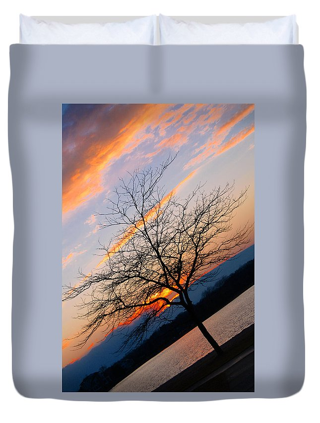 Tree Duvet Cover featuring the photograph The Tree by Jes Fritze