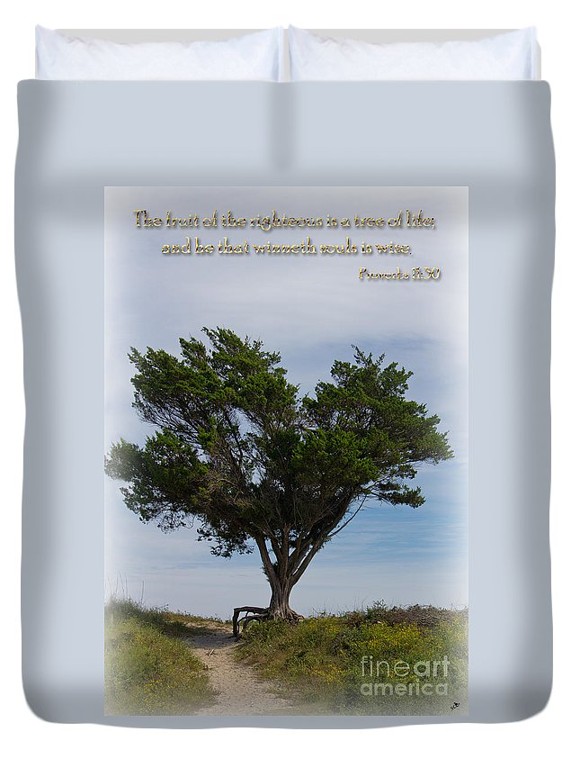 Scripture Duvet Cover featuring the photograph The Tree by Sandra Clark