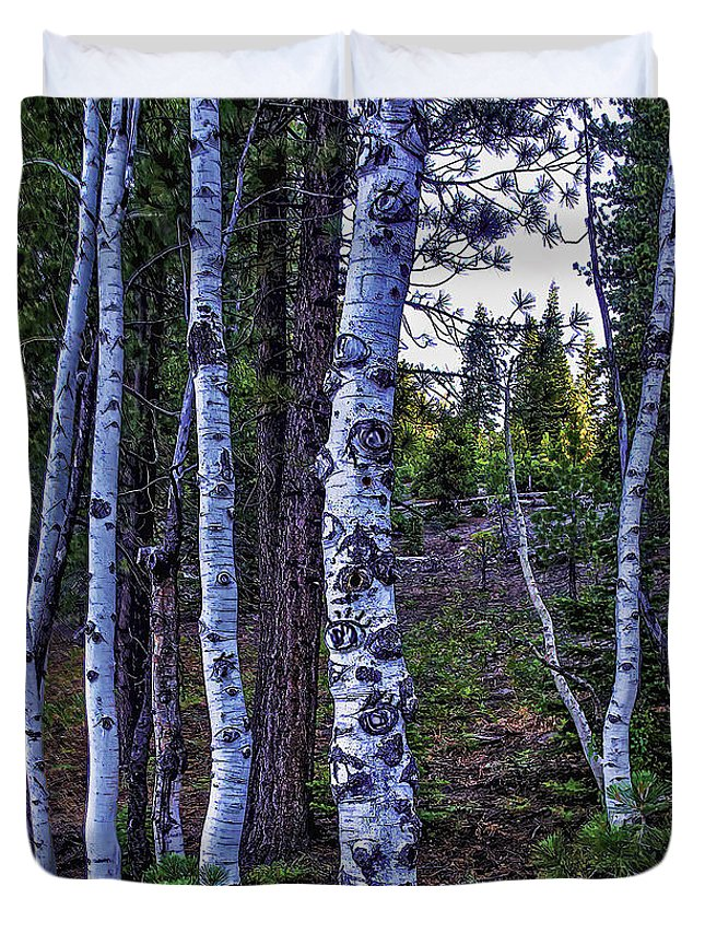 Lassen Np Duvet Cover featuring the photograph The Trees Have Eyes-d by Nancy Marie Ricketts