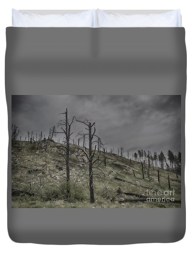 South Dakota Duvet Cover featuring the photograph The Trees That Were by Steve Triplett