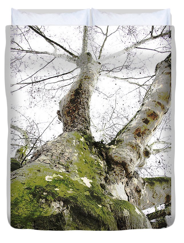 Low-angle Duvet Cover featuring the photograph The Trunk by Patrick Kessler
