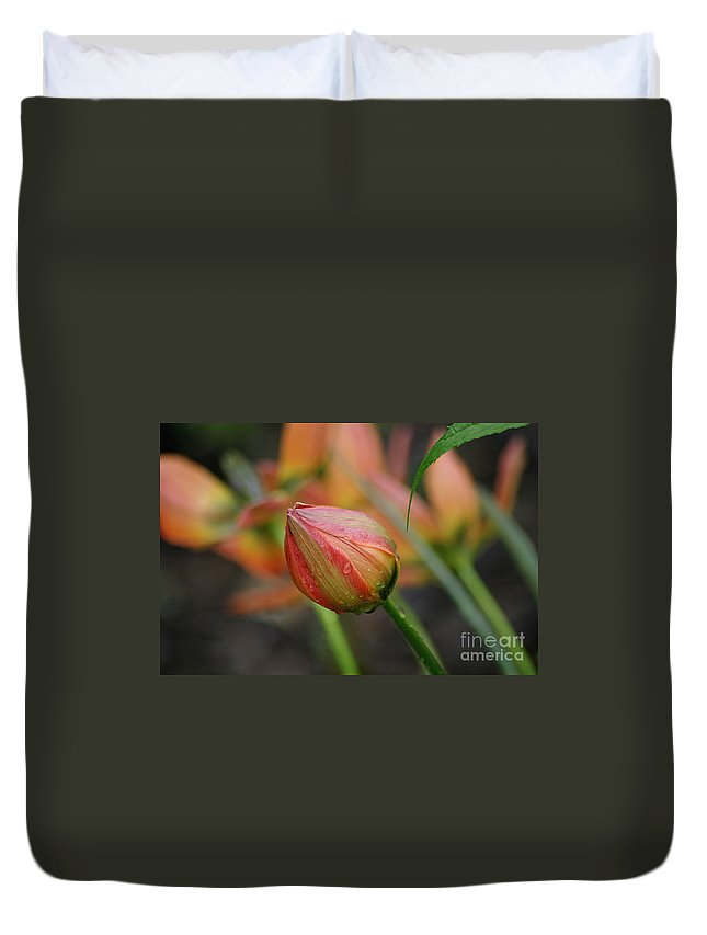 Tulip Duvet Cover featuring the photograph The Tulip Bud by Living Color Photography Lorraine Lynch