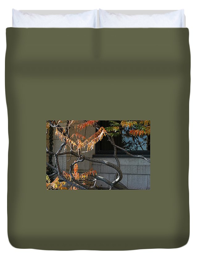 Branches Duvet Cover featuring the photograph The View by Joseph Yarbrough