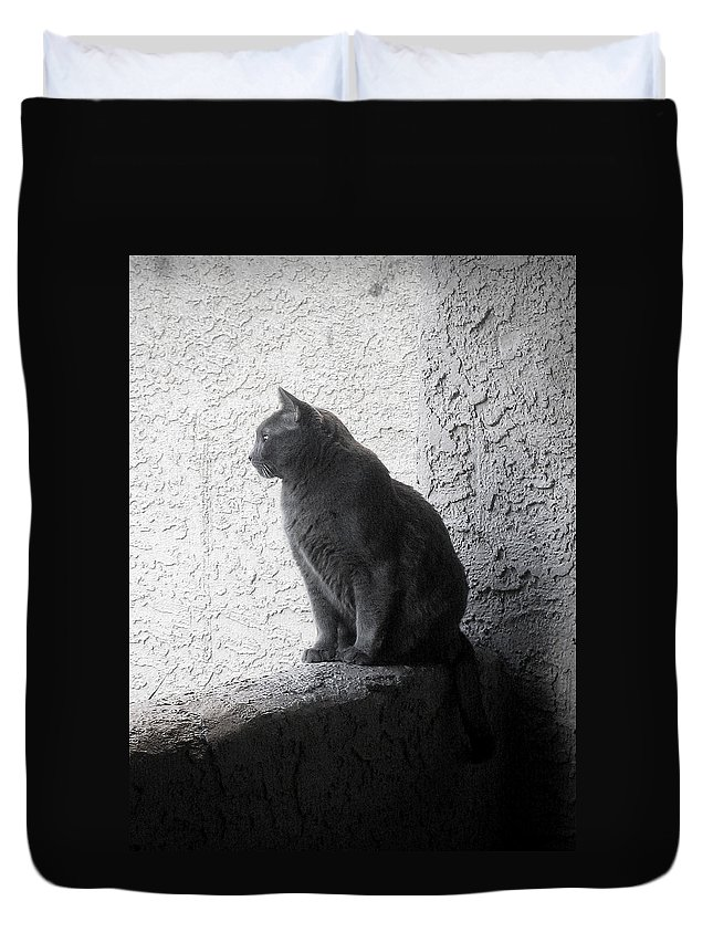 Cat Duvet Cover featuring the photograph The Visitor by Tammy Espino