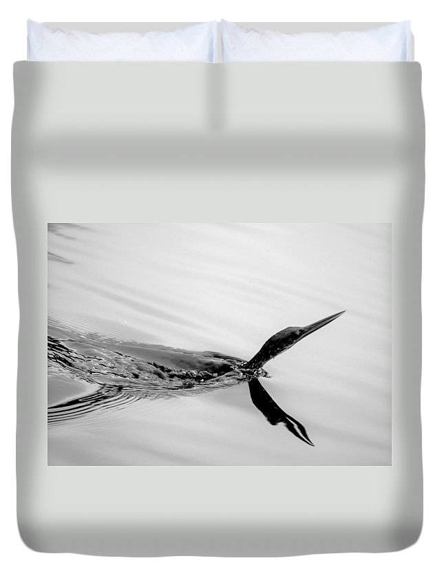 Anhinga Duvet Cover featuring the photograph The Wake Bw by Norman Johnson