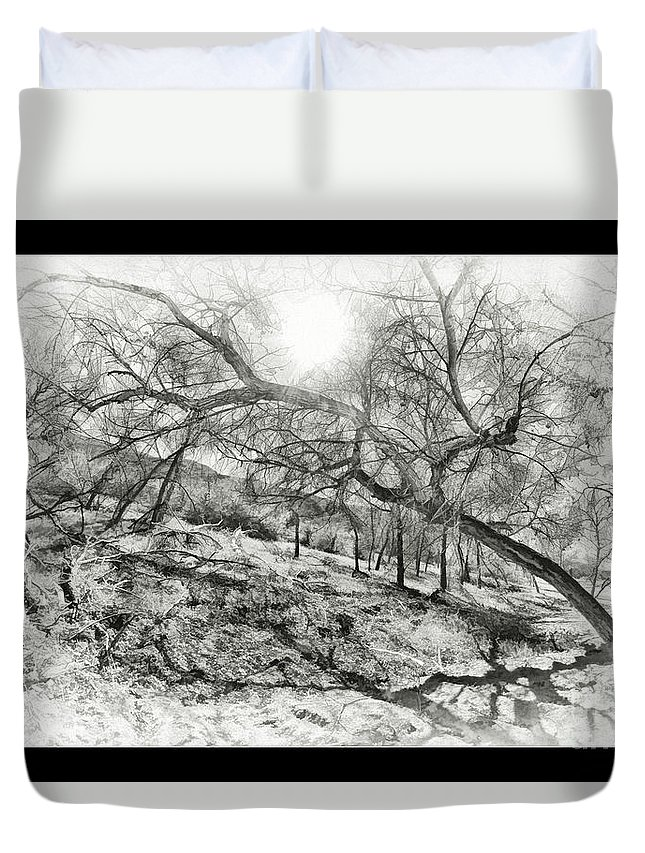 Art Photography Duvet Cover featuring the photograph The Wicked Trees by Blake Richards
