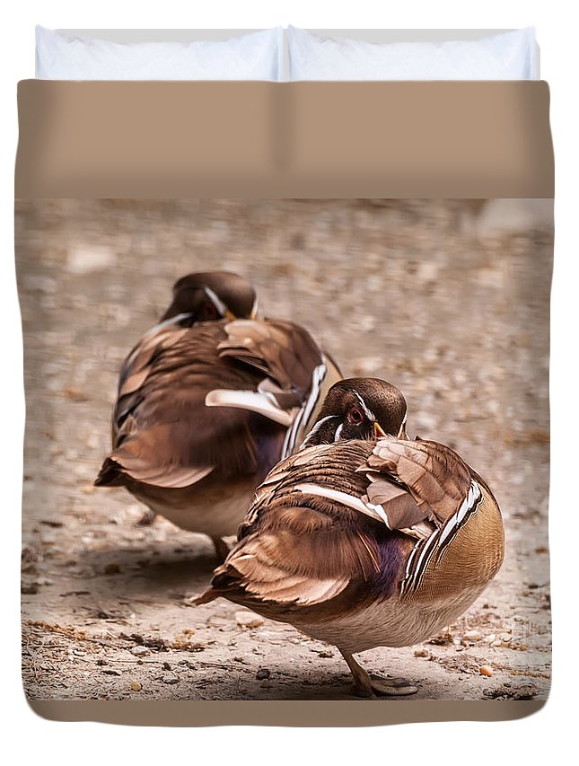 Duck Duvet Cover featuring the photograph These Aren't The Droids You're Looking For by Lois Bryan