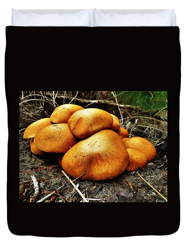 Fungi Duvet Cover featuring the photograph These Look Almost Animal by Steve Taylor
