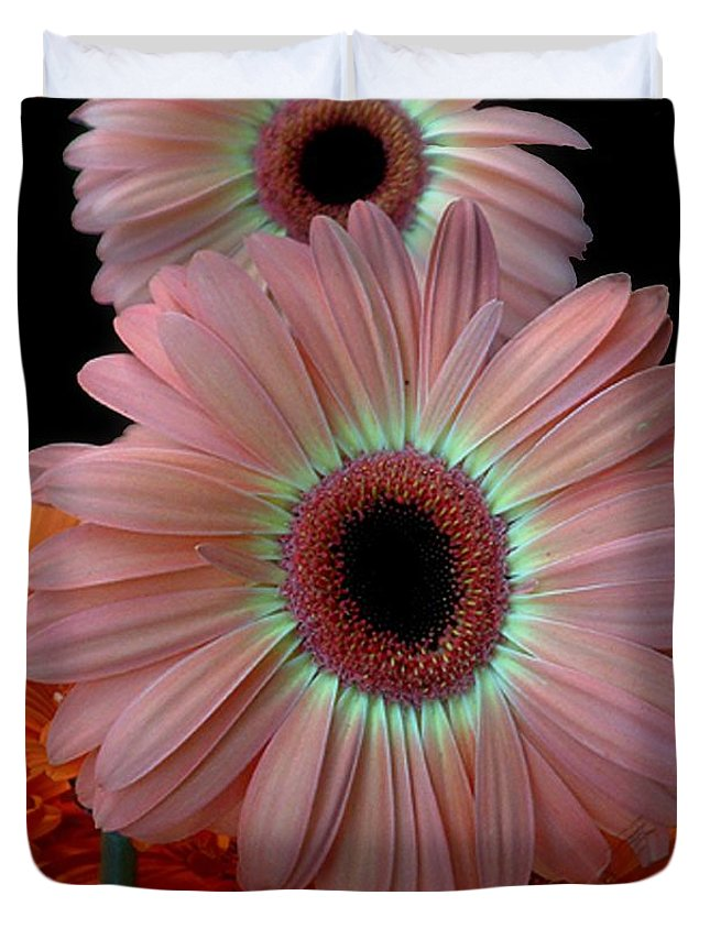 Gerberas Duvet Cover featuring the photograph Third Place by RC DeWinter