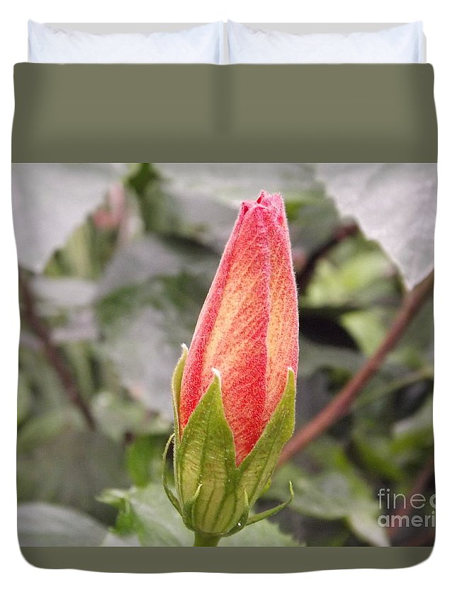 Garden Duvet Cover featuring the photograph This Bud For You by Lingfai Leung