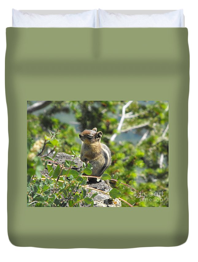 Animals Duvet Cover featuring the photograph This Is The Life by Brandi Maher