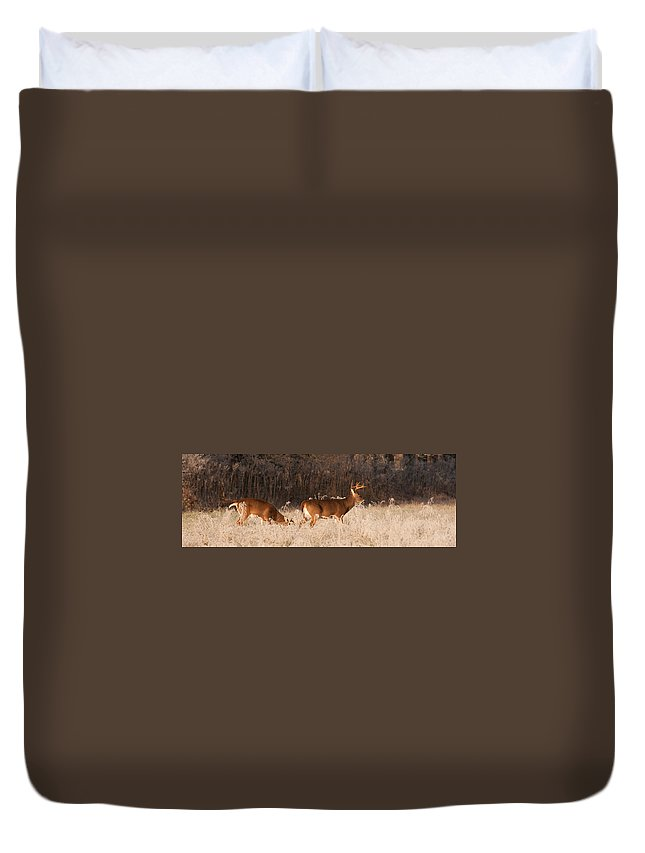 Canada Duvet Cover featuring the photograph This Way by Joye Ardyn Durham