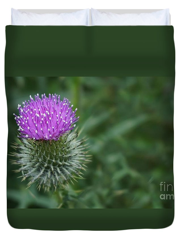 Thistle Duvet Cover featuring the photograph Thistle by Rawshutterbug